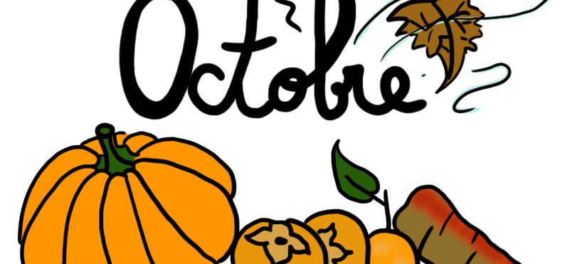 Le mois d'octobre, entre rencontres et votes...